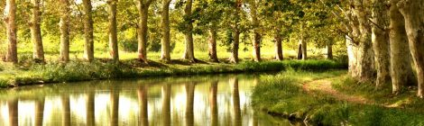 Канал дю Миди, юг Франции