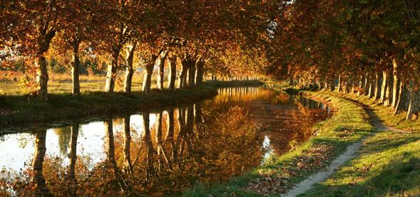Маршрут по Тулузе: зеленая Тулуза Canal du Midi