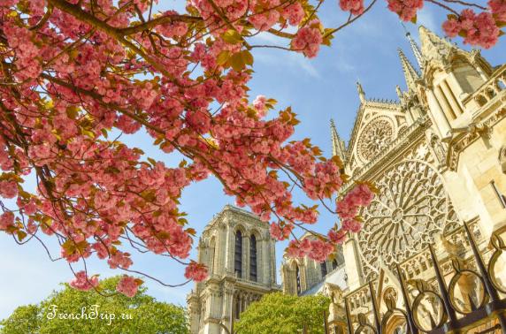 Sping_France_Paris - Сезоны во Франции, весна во Франции, погода во Франции, весной во Франции