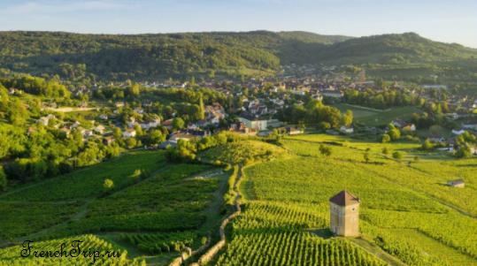 Виноградники и вина Арбуа
