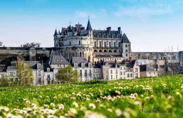 Château d'Amboise (Замок Амбуаз)