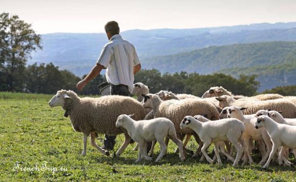 agneau fermier du Quercy Фижак