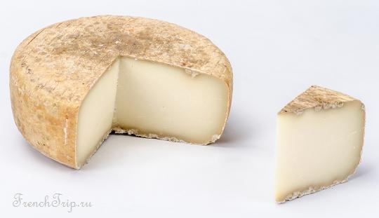 Ossau Iraty cheese 10 лучших французских сыров