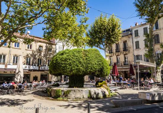 Salon de Provence (Салон-де-Прованс)