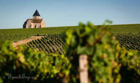 Вино Шабли (Chablis)