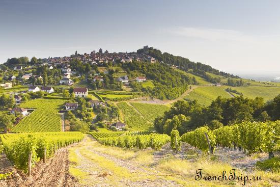 Виноградники Sancerre , вина долины Луары