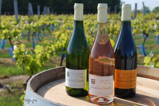 Вина верхнего Пуату (AOC Haut-Poitou) Poitiers vins AOC du Haut-Poitou_1